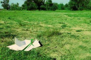 Об очереди на землю: как проверить в МУГИСО, электронная очередь на участок