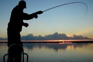 Налог на любительскую рыбалку в России, что о нем необходимо знать