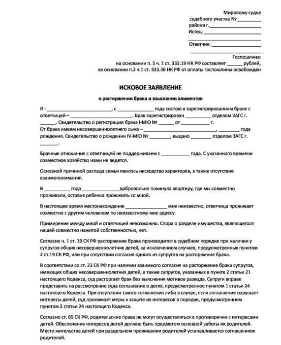 О заявлении на алименты в браке: куда и как подать, образец искового заявления