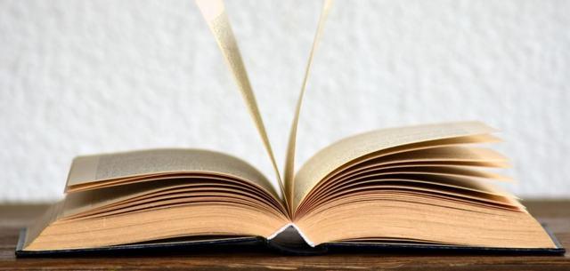 О приостановлении исполнительных производств судом: как отменить, заявление