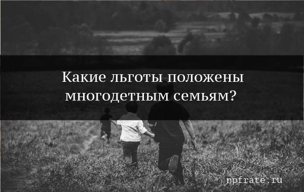 О льготах многодетным семьям: что положено, какая помощь и выплаты матерям