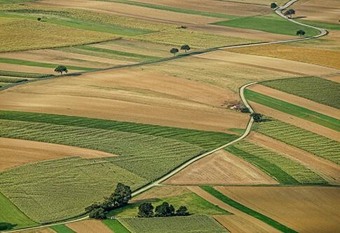 Штраф за неиспользование земель сельскохозяйственного назначения в 2018