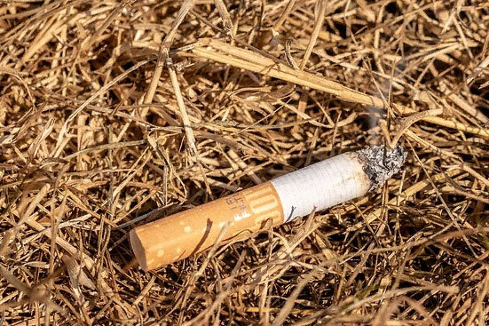 Штраф за поджог сухой травы: статья КОАП и сумма наказания, как оплачивать
