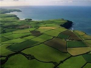 О целевом назначении земельных участков: как изменить порядок использования